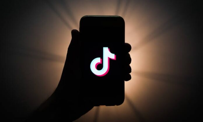 TikTok may back soon in India